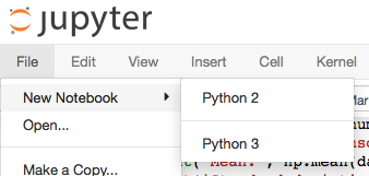 Notebook showing several available python kernels